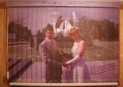 Свадебное фото на жалюзи