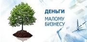 Кредиты  бизнесу(ИП,  юридические лицам).помощь, сопровождение Челябинск
