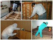 Уничтожение клопов,  насекомых грызунов в Челябинске