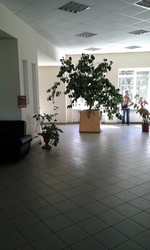 Сдаются офисные помещения.